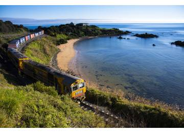 TasRail Engages Penguin Specialist as Part of new Coastal Erosion Works