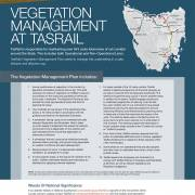 The TasRail Vegetation Management Plan image